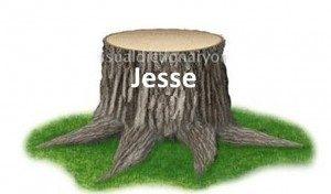Dinastia vista como um tronco de Jessé – pai de Davi